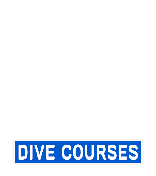 Learn to dive PADI courses Pattaya