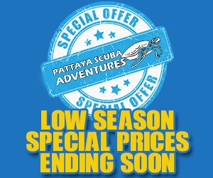 Pattaya Diving Special Offer Prices